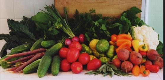 sumer veggies2